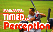 Timed Hitting Perception Language Of Hitting Dave Kirilloff Alex Kirilloff Hitting Drills for TIMING baseball training online hitting coach mike trout swing
