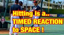 Hitting Drills for timing Language Of Hitting Dave Kirilloff Alex Kirilloff Hitting Drills for TIMING baseball training